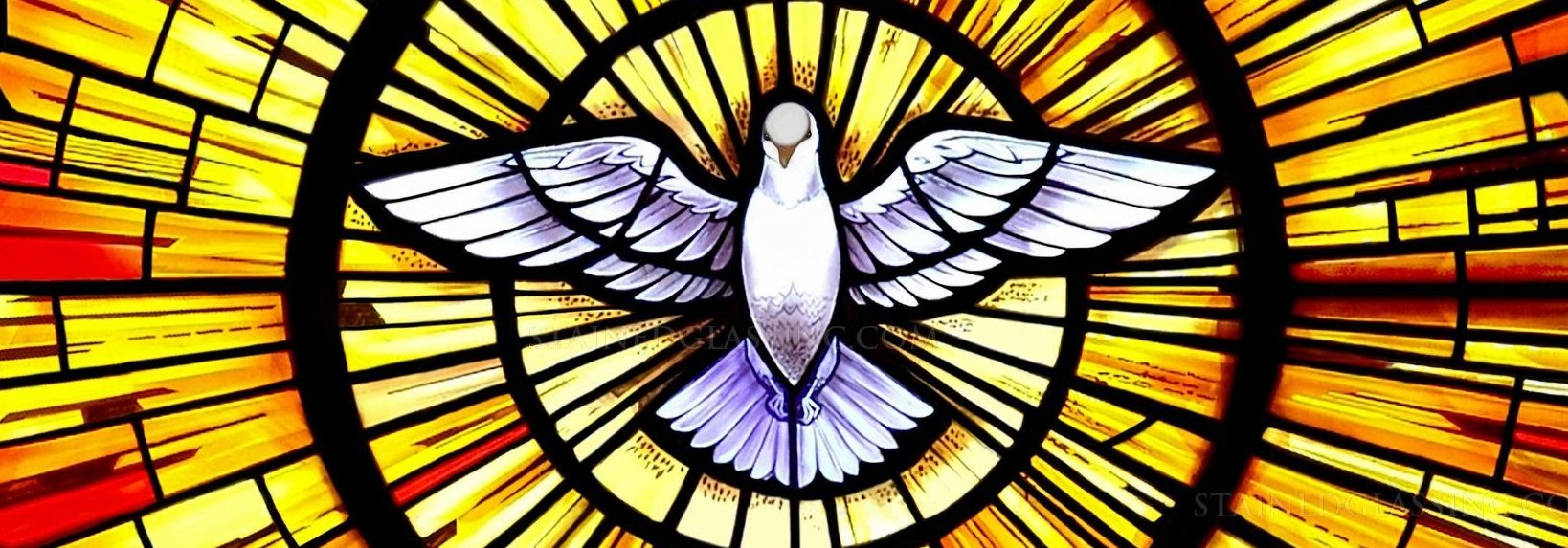 Duch Svätý mení naše životy (páter Ljubo Kurtovič, OFM)