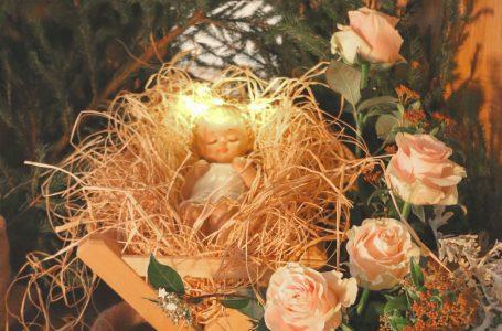 Výročné posolstvo Panny Márie, Kráľovnej pokoja, 25. decembra 2020, cez vizionára Jakova Čola